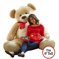 teddy_bear_sixfoot