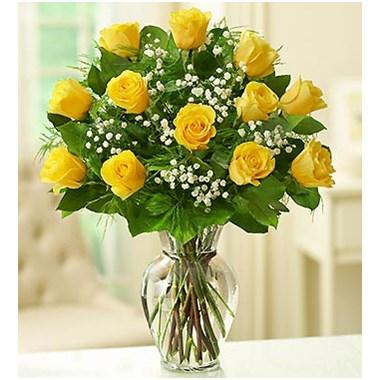 1 Dozen Classic Yellow Rose Vase 1 800 Flowers Flowerama Ames 431